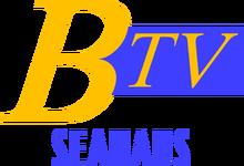 BTVS95.png