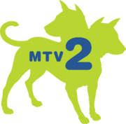 MTV2 2005 (Green and Blue).png