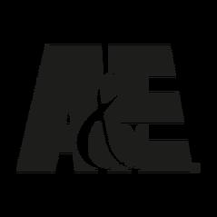 A-E 1992.png
