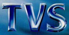 250px-Tvs1990s.jpg