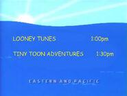 Toon Disney Looney Tunes To Tiny Toon Adventures