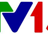 VTV13