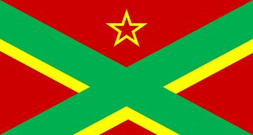 PIRAMCA FLAG.png