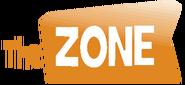 The Zone International Logo Orange