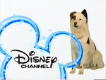 DisneyStan2012