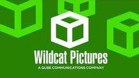(EPILEPSY_WARNING)_Wildcat_Pictures_Logo_(2020)_(V2)