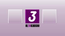 ElTVKadsre3 2010ID