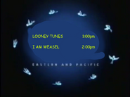 Toon Disney Toons Looney Tunes To I Am Weasel