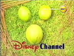 DisneyCoconuts