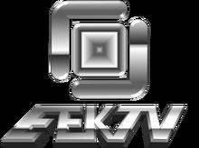 EEKTV4.png