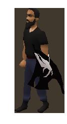 Darkly Spirit Shield
