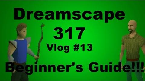 DreamScape317 RSPS Vlog 13 Beginner's Guide to DreamScape!
