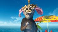 Madagaskar-3-04