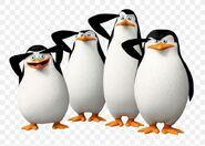 Kowalski-penguin-madagascar-dreamworks-wallpaper-png-favpng-DLXgTncJfVrJNekBnLRfP6bj5