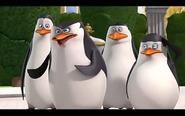 Pingwins 9
