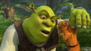 Shrek i Kot