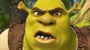 Z22769941Q,Shrek