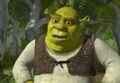 Shrek43