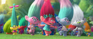 Satin and chenille with other trolls