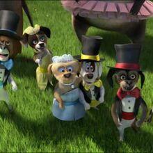 Six Circus Dogs 2.jpg