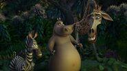Madagascar-disneyscreencaps.com-4306