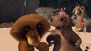 Madagascar-disneyscreencaps.com-3863
