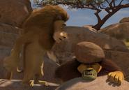 Lion drop rock at teetsi 4