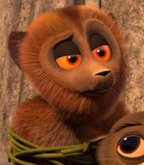 Ted (lemur)