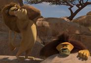 Lion drop rock at teetsi 2