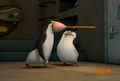 Fail-Kowalski-Fail-penguins-of-madagascar-19700742-524-352