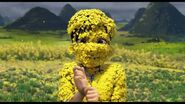 Jin covererd with petals