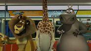 Madagascar-disneyscreencaps.com-2377