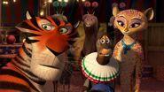 Madagascar302