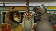 Madagascar-disneyscreencaps.com-2383