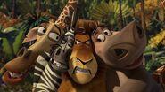 Madagascar-disneyscreencaps.com-3988