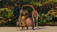 Madagascar-disneyscreencaps.com-4007