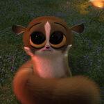 Madagascar mort hold me.jpg