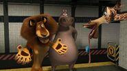 Madagascar-disneyscreencaps.com-2232