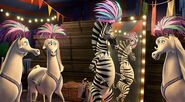 Madagascar-3-europes-most-wanted5