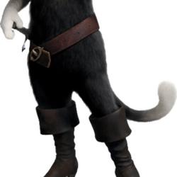 Kitty Pata Mansa