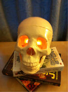 Bob-orange eyes on Butcher books