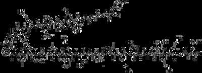 β-Endorphin
