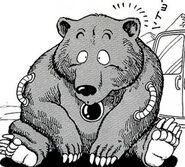 Bear manga