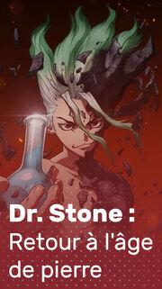 DrStone Retour à l'âge de pierre billetblog.jpg