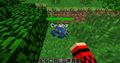 Tamed blue crab