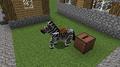 Zebra shuffling