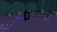 Nether portal in the lair