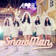 Snowman cover