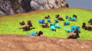 Nasutoceratops herd