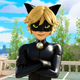 ML Cat Noir